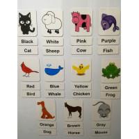 Colors and Animals - Renkler ve Hayvanlar Magnet