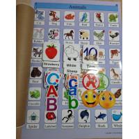 İngilizce Poster ve Magnet Eğitim Materyalleri Seti