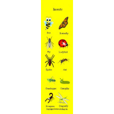 Insects Bookmark - Böcekler Kitap Ayracı
